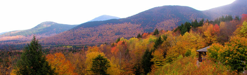 White Mountains Autumn